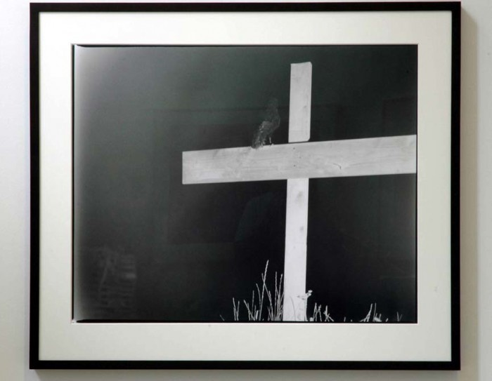 Assemblage 1 (Cross) 2009 low